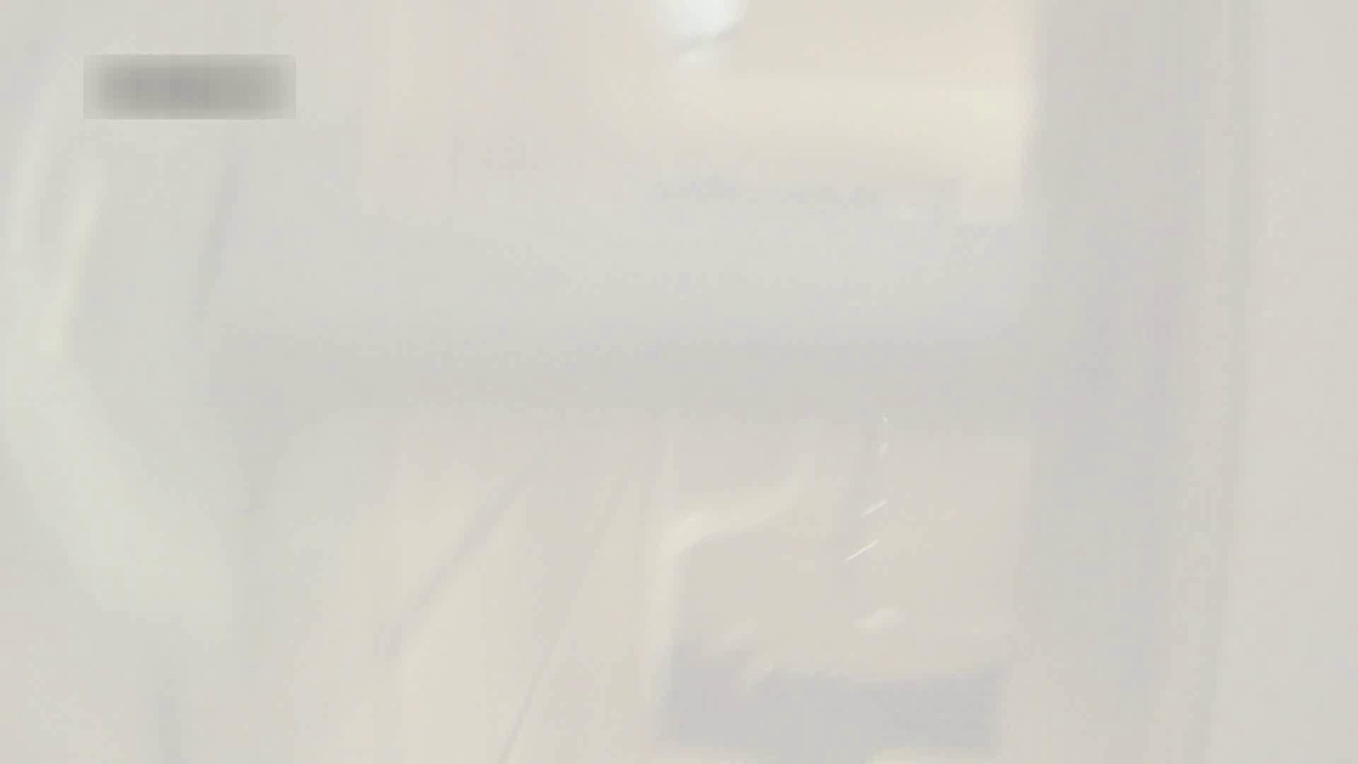 お姉さんの恥便所盗撮! Vol.6 エロティックなOL オマンコ無修正動画無料 73画像 62