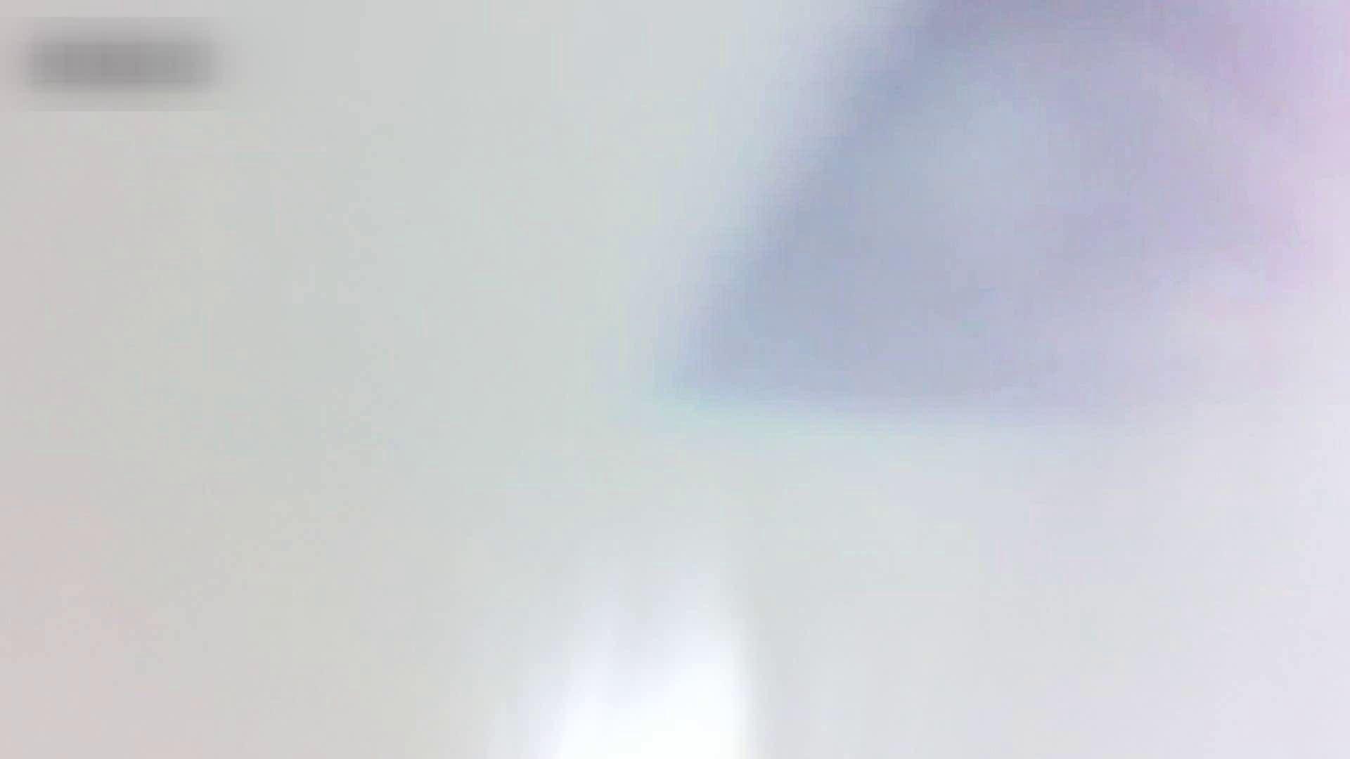 お姉さんの恥便所盗撮! Vol.10 エロティックなOL  101画像 36