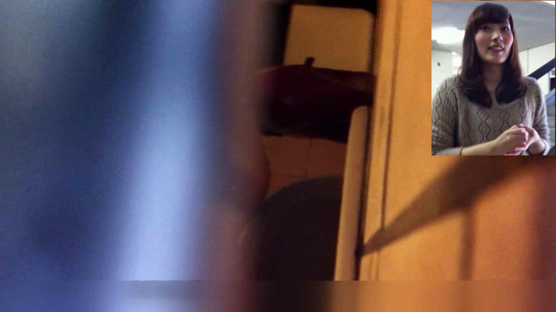 お姉さんの恥便所盗撮! Vol.10 洗面所はめどり エロ画像 101画像 74