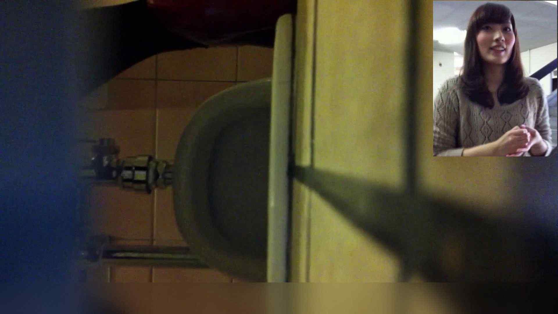 お姉さんの恥便所盗撮! Vol.10 お姉さんのヌード オマンコ無修正動画無料 101画像 94