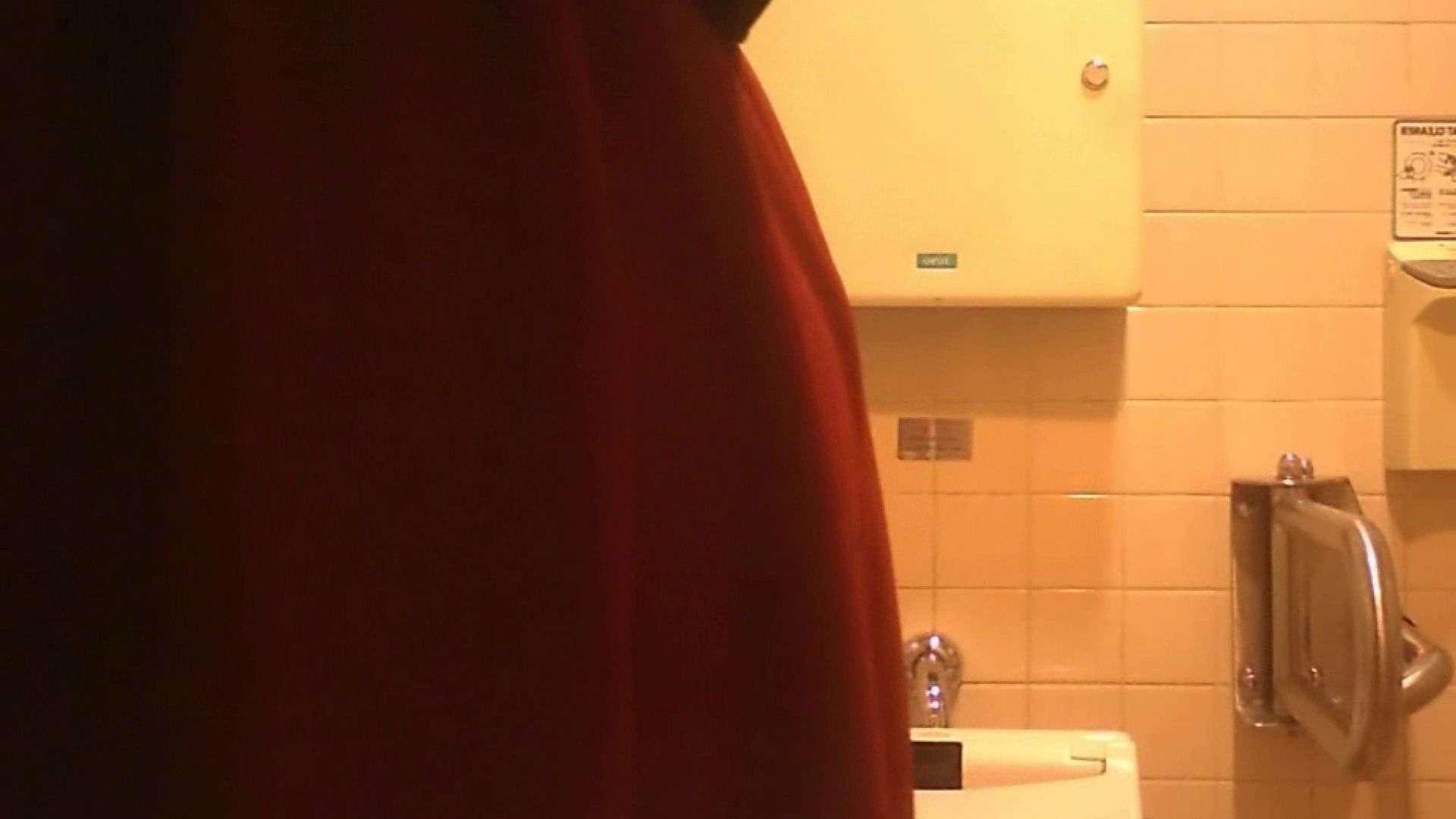 お姉さんの恥便所盗撮! Vol.27 エロティックなOL オメコ無修正動画無料 69画像 38