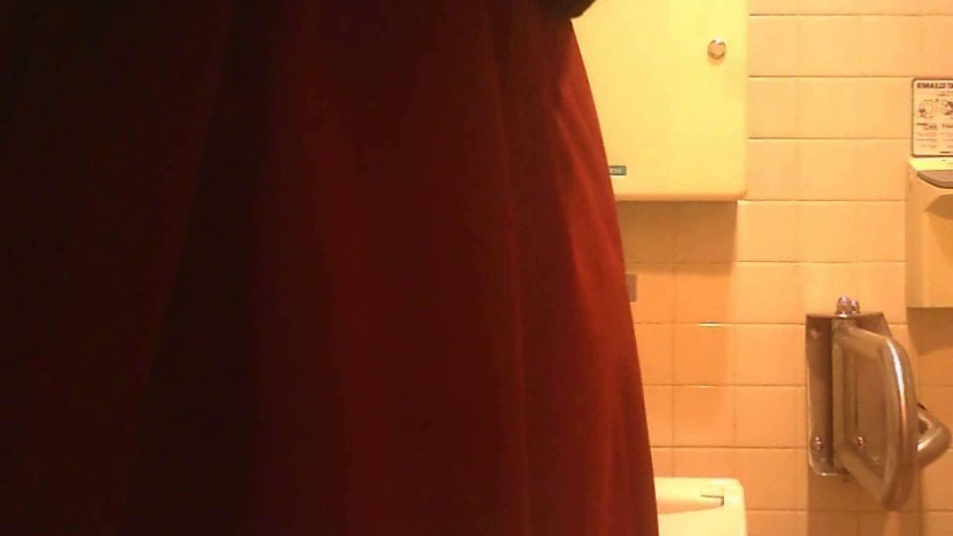 お姉さんの恥便所盗撮! Vol.27 洗面所はめどり オマンコ無修正動画無料 69画像 39