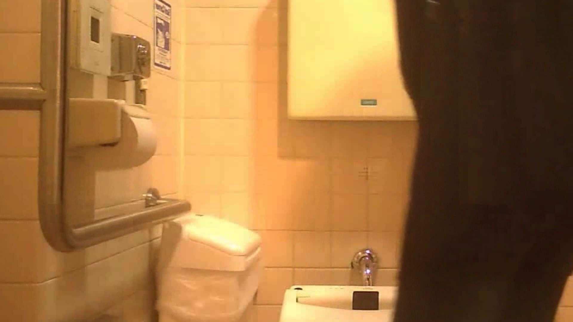 お姉さんの恥便所盗撮! Vol.27 洗面所はめどり オマンコ無修正動画無料 69画像 69